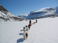 dogsled-faq-3.jpg