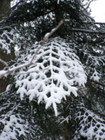 winterclothes3