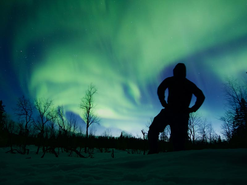 Watching the Aurora on a dogsled tour